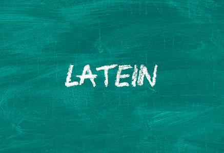 Nachhilfe Landshut - Nachhilfefächer Latein